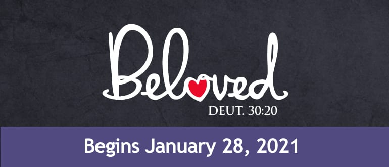 Beloved: A Bible Study For Moms